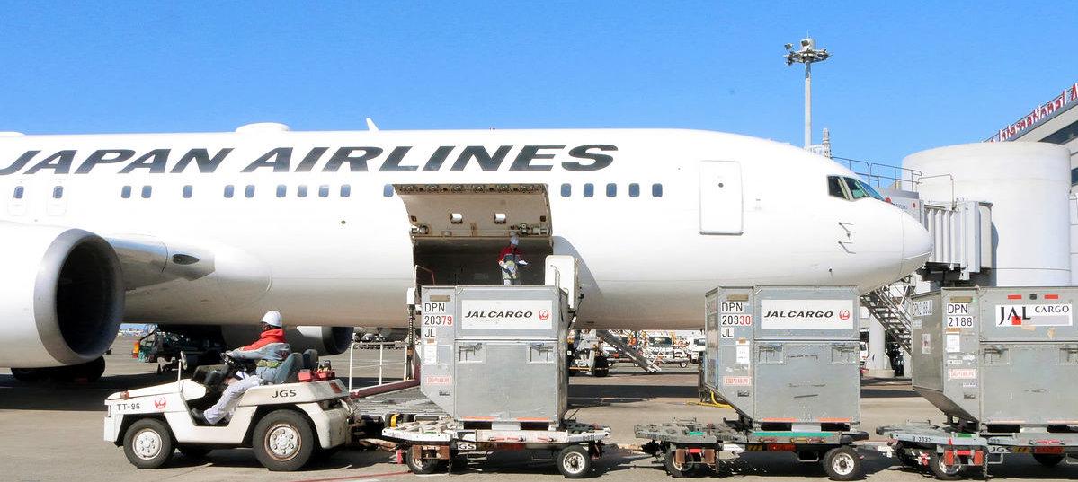 JAL cargo2.jpg