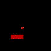 blackprofits logo.png