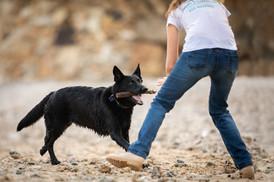 אורית זנגביל למברג   מומחית להתנהגות כלבים