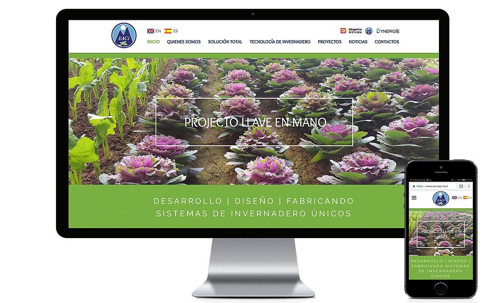 אתר בספרדית של חברת EACI