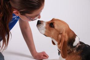 אורית זנגביל למברג | מומחית להתנהגות כלבים