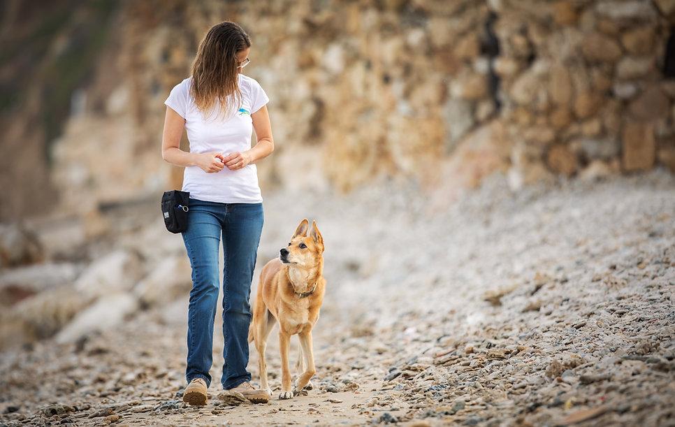 אורית זנגביל למברט | מומחית להתנהגו כלבים | אילוף בסיסי