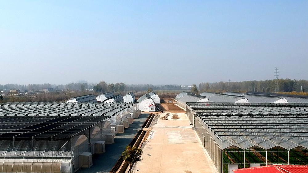 sino-israel greenhouse system