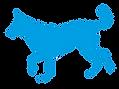 אורית זנגביל למברט | מומחית להתנהגו כלבים | עזרה בבחירת כלב
