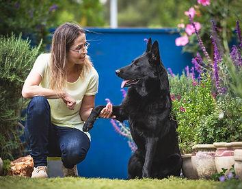 אורית זנגביל למברט | מומחית להתנהגו כלבים | תחומי פעילות | עזרה בבחירת כלב