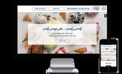 רשת החנויות של גלידות פלדמן