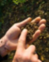 Farmer_dirt in hand.jpg