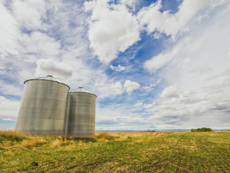 Why On-Farm Storage is Important to Both Farmers and Buyers