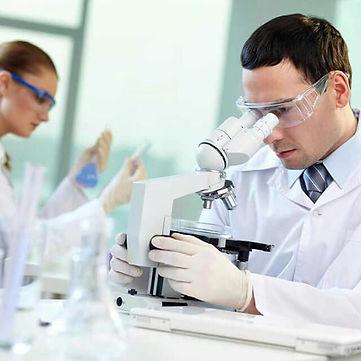 quimica sanguinea.jpg