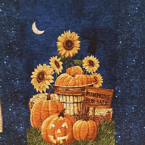 Pumpkins for sale Panel