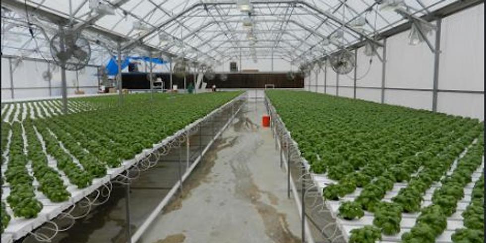 Quality in Cannabis Cultivation - A GRQC Webinar