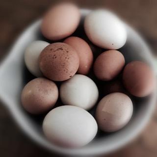 Scrambled Eggs..