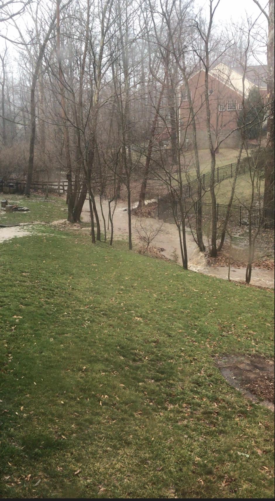 creek 2019