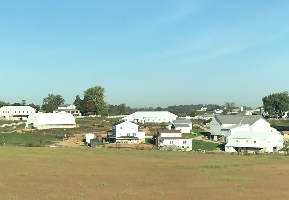 amish white houses