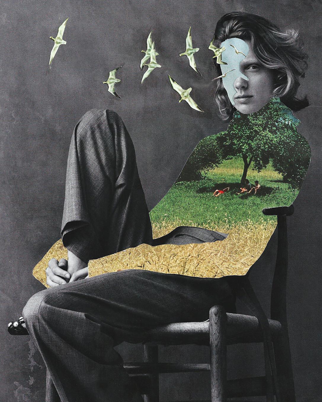 BirdBrain.Collage.jpg