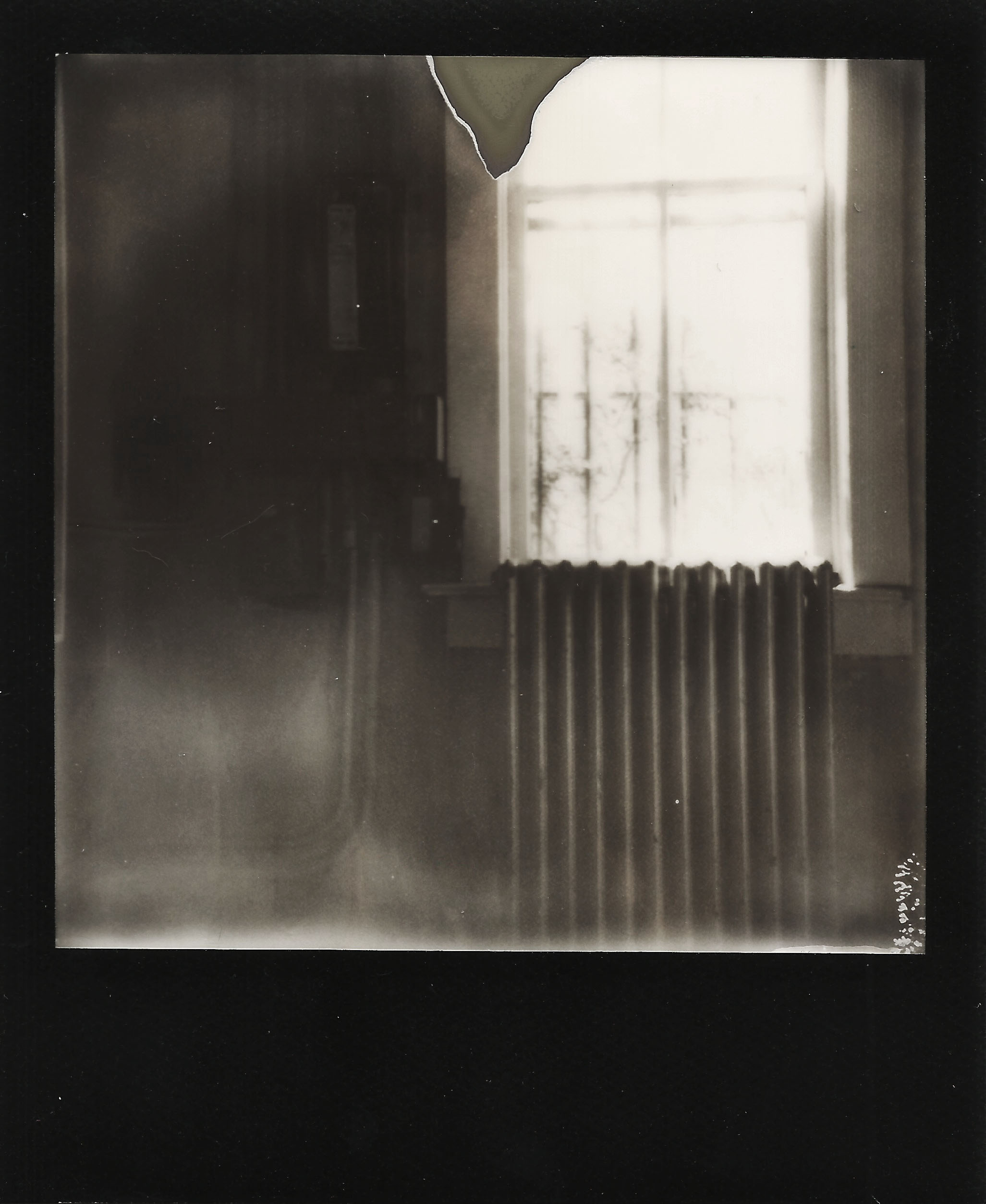 Polaroid.Haunted