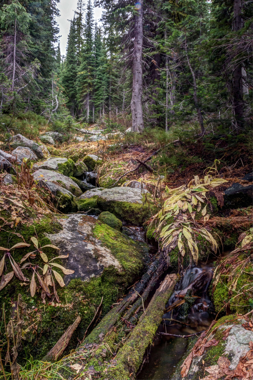 hiking-15_6_7_fused