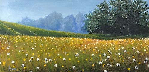 The Wishing Fields