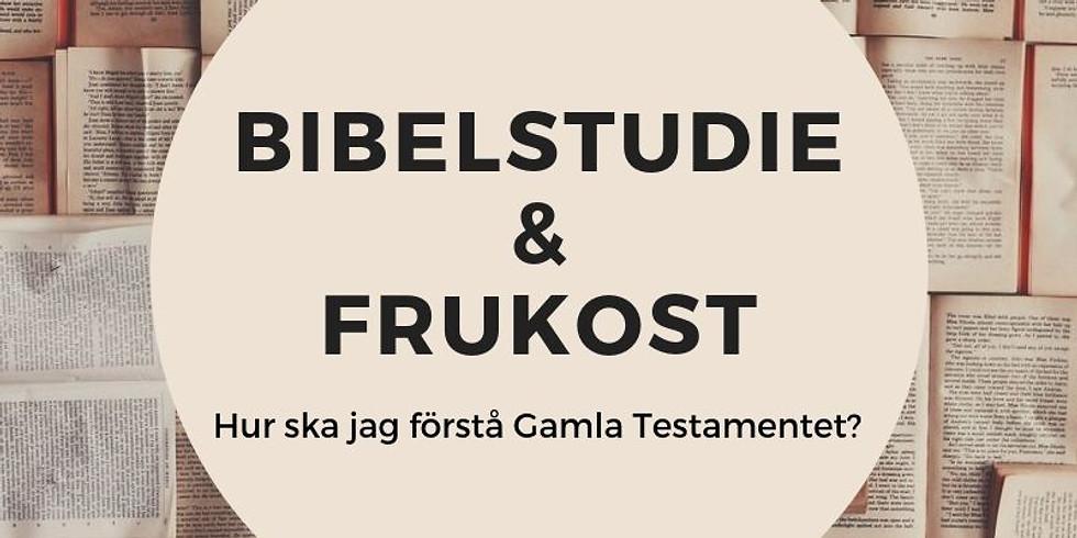 Bibelstudie & Frukost