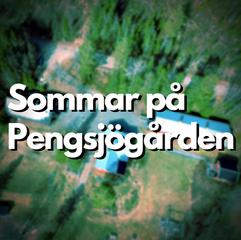 Sommar på Pengsjögården.png