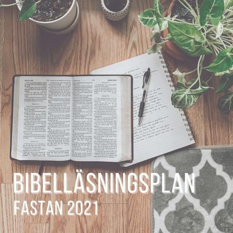 Bibelläsningsplan.jpg