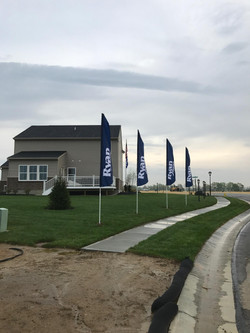 Ryan feather flags