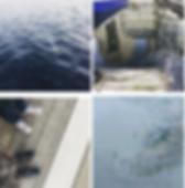 Screen Shot 2020-01-23 at 12.58.46.png