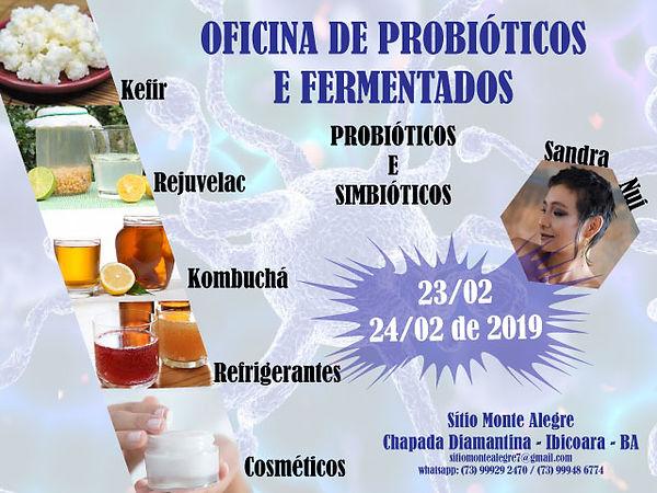 oficina-probioticos_final.jpg