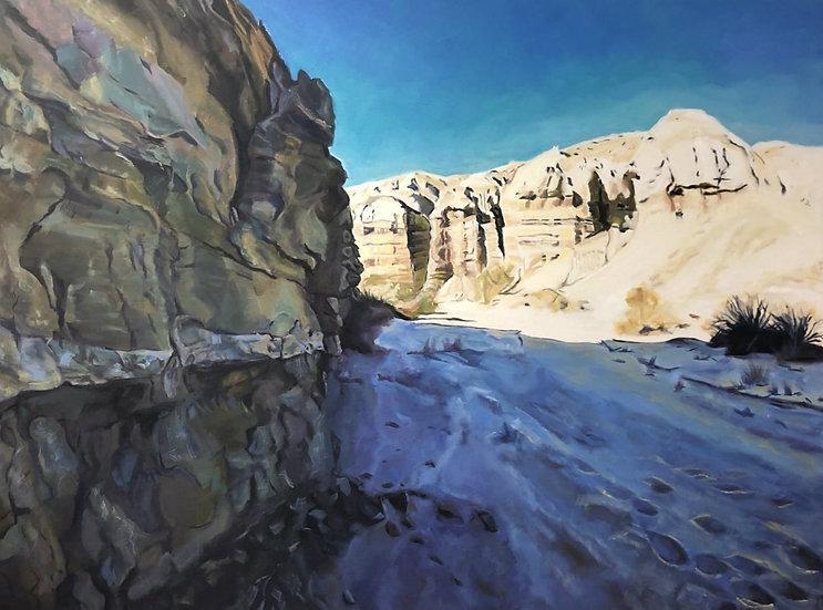 Desert Shadows, by Nancy Plank
