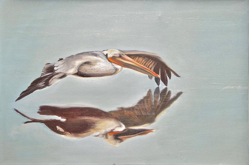 Pelican² , by Bronle Crosby