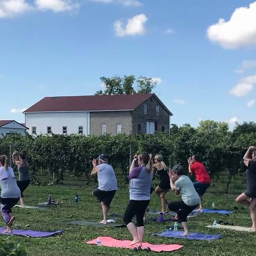 Yoga in the Vineyard or the Rustic Barn with Sheri Curry