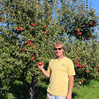 'Sean' in the 1000 tree apple orchard at FRW