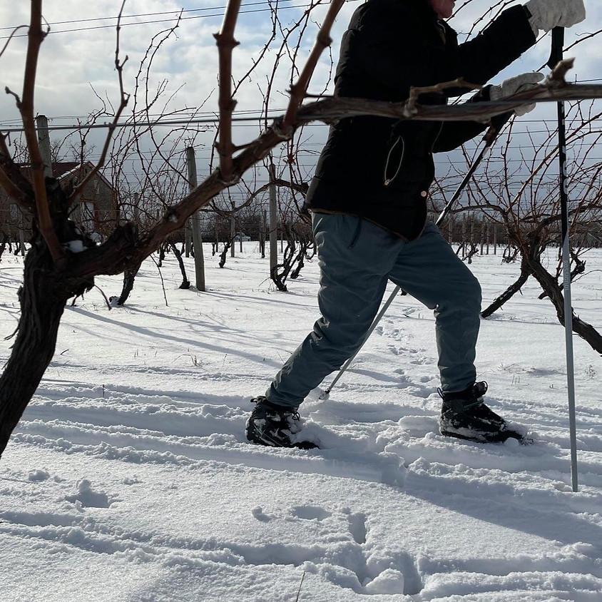 Ski-In & Ski-Out @ Freedom Run Winery