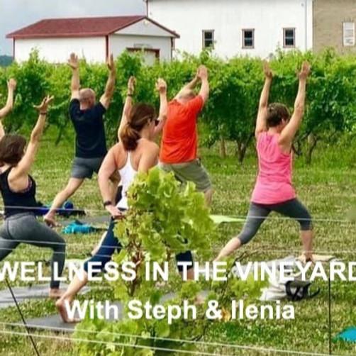 Wellness Vendors & Yoga in the Vineyard with Steph & Ilenia @ Freedom Run Winery