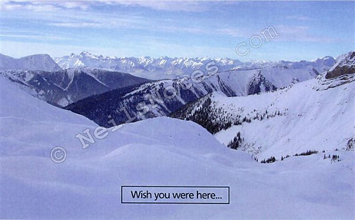 #277 - Wish You Were Here!