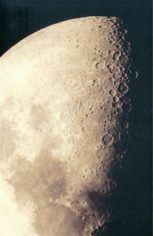 #286 - Mooned