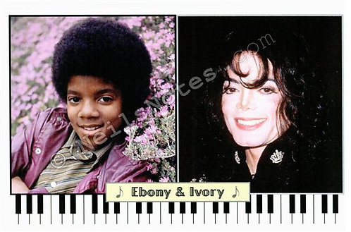 #295 - Ebony & Ivory