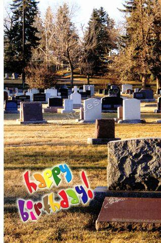 #271 -  Cemetery