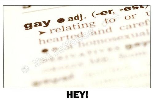 #306 - Hey... I'm Gay!