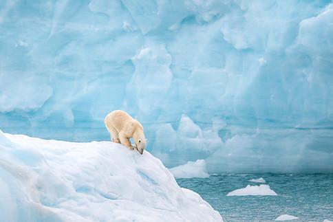 Arctic_Landscapes-051.jpg