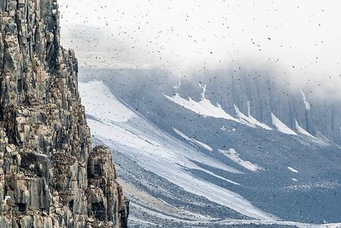 Arctic_Landscapes-053.jpg