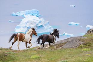 Arctic_Landscapes-022.jpg