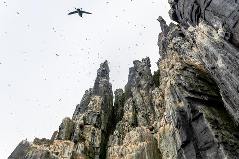 Arctic_Landscapes-054.jpg