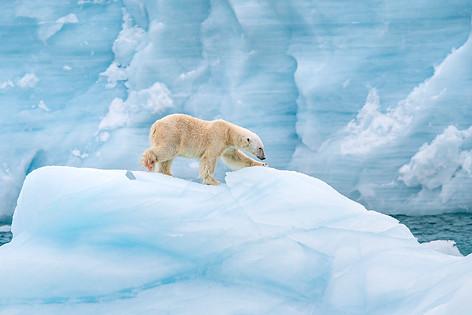 Arctic_Landscapes-050.jpg