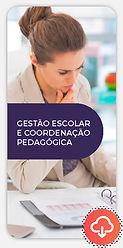 novoeste-online-gestao-escolar-imagem-do