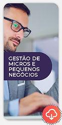 novoeste-online-micros-e-pequenos-imagem