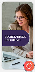 novoeste-online-secretariado-executivo-i