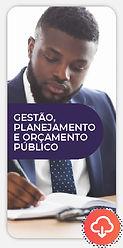 novoeste-online-orçamento-publico-imag