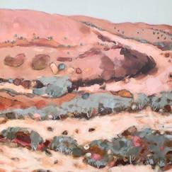 Gascoyne detail