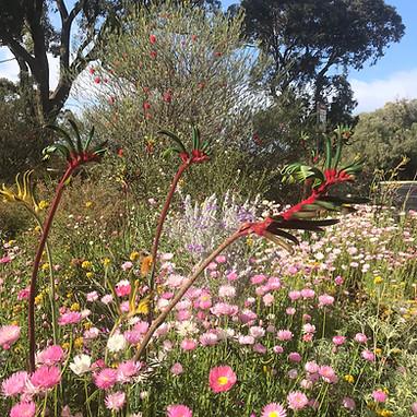 Spring in the gardens.